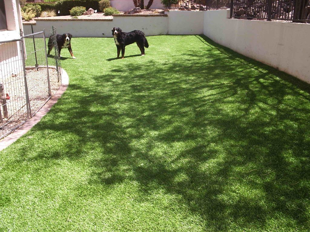 Synthetic Lawn Pet Turf Company Inland Empire, Best Artificial Pet Turf Pricing